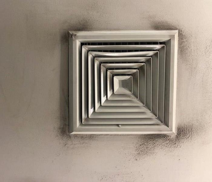 Commercial How To Detect Mold in Your Air Ducts