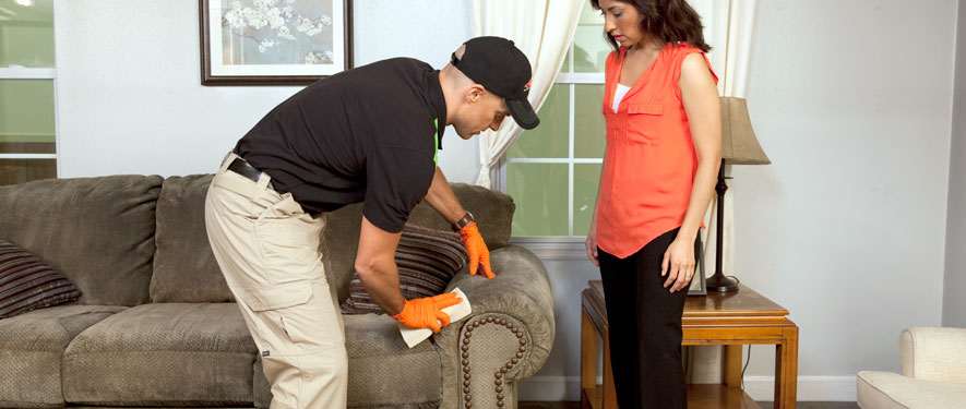 Highland Ranch, CO carpet upholstery cleaning