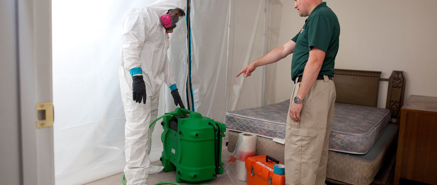 Highland Ranch, CO mold removal process